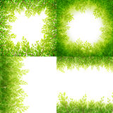 Green leaves frame Set isolated on white. EPS 10. Green leaves frame Set isolated on white background. EPS 10 vector file included Stock Image