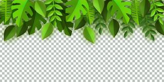Vector green leaves frame background template. Green leaves frame template with text space on transparent background. Abstract natural decoration pattern. Summer Royalty Free Stock Photo