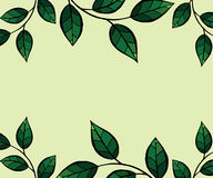 Green leaves frame. Vector background. Frame template  illustration. Concept background picture Royalty Free Stock Photo