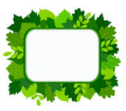 Green leaves frame. Vector illustration Royalty Free Stock Image