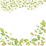 Green leaves frame vector illustration for spring design vector illustration
