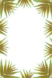 Green leaves frame with white background. With copy space Royalty Free Stock Images