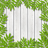 Green leaves frame on wood Stock Photography