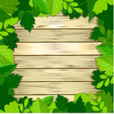 Green leaves frame on wooden background. Vector illustration Stock Photography