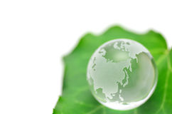 Green leaves and Glass earth. Royalty Free Stock Photography
