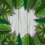 Green leaves on gray wooden board Stock Image