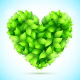 Green Leaves Heart Stock Images