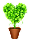 Green Leaves Heart Royalty Free Stock Photo