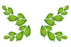 Green leaves icon Stock Photo