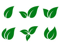 Green leaves icon set Stock Image