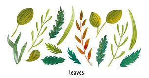 Green leaves illustration watercolor background seamless art royalty free stock image
