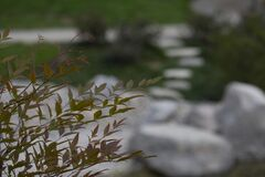 Free Green Leaves In Focus With Blurred Stepping Stones In The Background Stock Image - 168828311