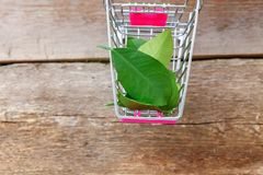 Free Green Leaves In Toy Cart Royalty Free Stock Photos - 114317778