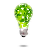 Green Leaves inside Bulb Royalty Free Stock Photography