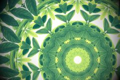 Green leaves with kaleidoscope effect, abstract color nature background. royalty free illustration