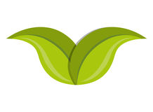 Green leaves or leaf ecology theme Stock Photo