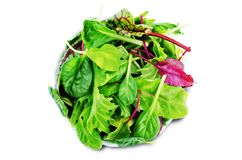Green leaves for lettuce, spinach, chard, arugula, beet greens on a white isolated background. Toning. selective focus stock images