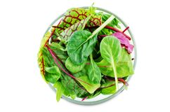 Green leaves for lettuce, spinach, chard, arugula, beet greens on a white isolated background. Toning. selective focus royalty free stock photos