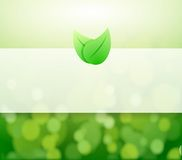 Green leaves and lights illustration Royalty Free Stock Photos