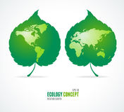 Green leaves like globe and world map. Eco concept Stock Images