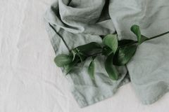 Green leaves linen. Minimal eco nature concept Stock Photo