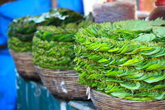 Green leaves in local market in India. Royalty Free Stock Photography