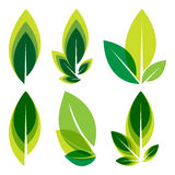 Green leaves logo set. Design royalty free illustration