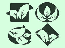 Green Leaves logos Stock Image