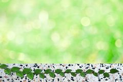 Green leaves of Mexican daisy nature border and blur green bokeh terrazzo floor. Green leaves of Coatbuttons or  Mexican daisy nature border and blur bokeh stock photography