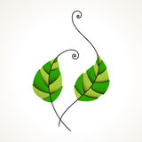 Green leaves. Nature, organic & ecology icon Royalty Free Stock Photography