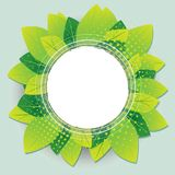 Green leaves nature round circle frame vector illustration. vector illustration