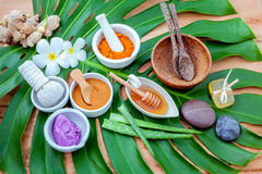 Green leaves with nature spa ingredient turmeric powder in white Royalty Free Stock Photo