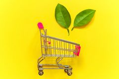 Free Green Leaves Near Toy Cart Royalty Free Stock Photo - 117329045