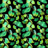 Green leaves in night forest. Seamless pattern, black background. Watercolor. Green leaves in night forest. Seamless pattern at black background. Watercolor royalty free stock photos