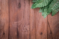 Green leaves on old wooden background Stock Photography
