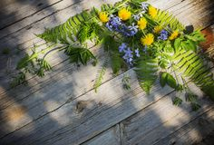 Green leaves on old wooden background Royalty Free Stock Image