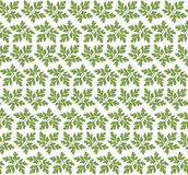 Green leaves ornament pattern vector Royalty Free Stock Images