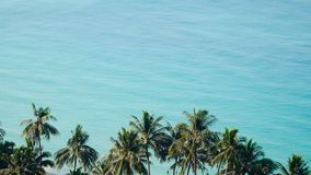 Green leaves of palmtree at blue sea water. On exotic tropical island. Scenic and peaceful background of perfect sea shore stock footage