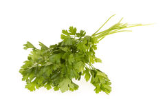 Green-leaves-of-parsley Royalty Free Stock Photography