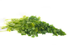 Green leaves of parsley isolated Royalty Free Stock Photos