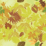 Green leaves pattern. Seamless background with green leaves Royalty Free Stock Photos