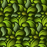 Green leaves pattern. Seamless vector. Green leaves on a green background seamless vector illustration. Vector EPS10 Royalty Free Stock Images