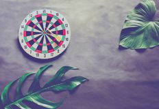 Green leaves plant growing with dart board. The tropical plant and game Stock Photography
