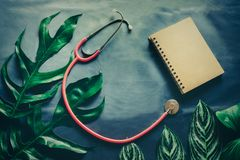 Green leaves plant growing wit pink stethoscope. The tropical plant stock photography