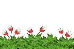 Green leaves and red flowers   on white background. Eps10 Stock Images