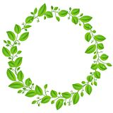 Green leaves round frame Stock Photography