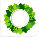 Green leaves round frame Stock Images