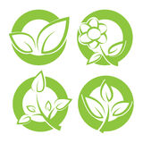 Green leaves round stickers Stock Photography