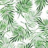 green leaves Sömlös modell för vattenfärg Royaltyfri Fotografi