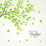 Green leaves for Save Nature. Stock Images